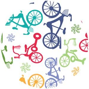 Angela Rekucki, Bikes N Trikes, Bikes N Trikes Multi
