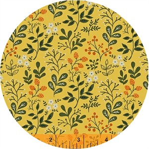 Dinara Mirtalipova for Windham, Gardening, Berries Yellow
