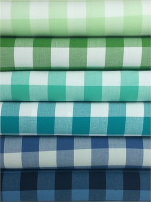 "Robert Kaufman, Carolina Gingham 1"" 6 Total"