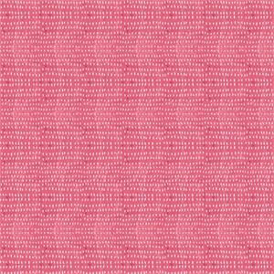 Cori Dantini, Hello World, Tiny Seeds Pink