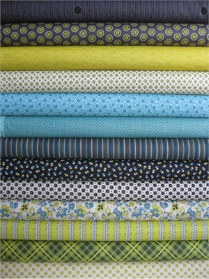Denyse Schimdt, Chicopee, Relish in FAT QUARTERS, 12 Total