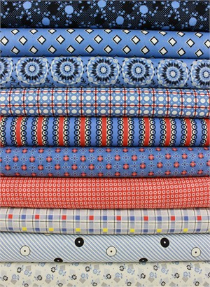 Denyse Schmidt for Free Spirit, Stonington, Dungaree in FAT QUARTERS 10 Total