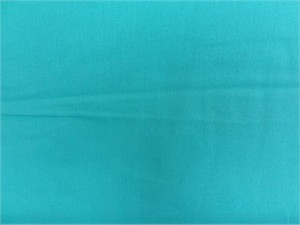 Echino, Decoro 2014, Solids Celeste Blue