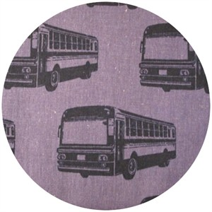 Echino, Decoro, Bus Purple