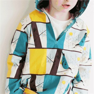Free PDF Pattern & Tutorial: Rohan Hoodie by The Crafty Kitty