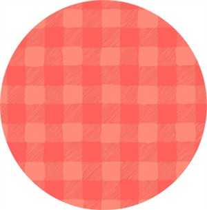 Rae Ritchie for Dear Stella, Trail Mix, Gingham Coral