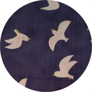 Japanese Import, DOUBLE GAUZE, Gulls Night
