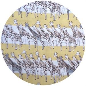 Kobayashi, DOUBLE GAUZE, Giraffes Sun