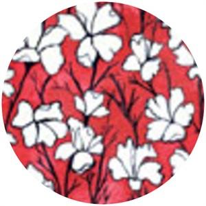 Laura Gunn, Cosmos, Daylilies Cream