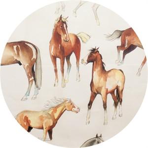 Alexander Henry, Love of Horses Natural