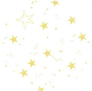 Sarah Jane for Michael Miller, MINKY, Lucky Stars White