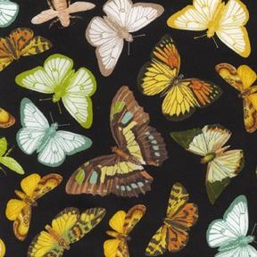 Michael Miller, Anjou Papillon Black