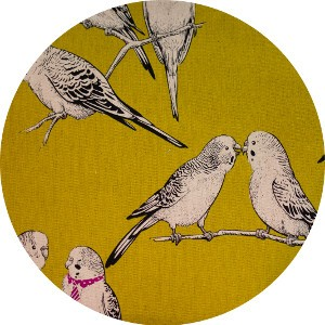 Japanese Import, CANVAS, Polly and the Parakeets Mustard