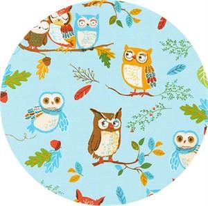 Robert Kaufman, Forest Fellows, Owl Love Wild
