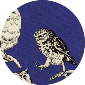 Cosmo Textiles, CANVAS, Stylish Owls Blueberry