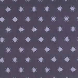 Tula Pink, Fox Field, Vintage Stars Dusk