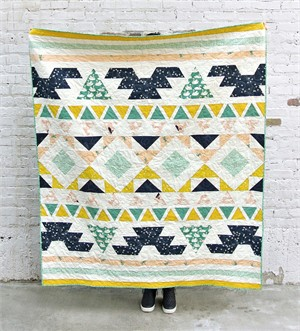 Warrior Quilt Kit Featuring Swan Lake and Mod Basics 3