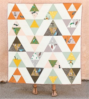 Bird Watching Quilt Kit featuring Western Birds