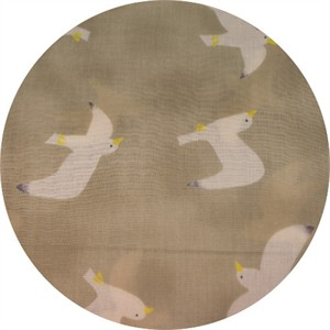 Japanese Import, DOUBLE GAUZE, Gulls Taupe