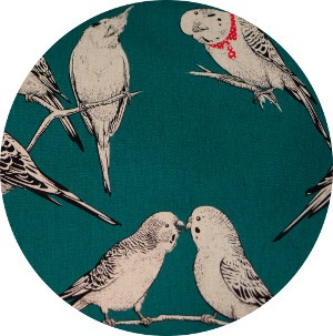 Japanese Import, CANVAS, Polly and the Parakeets Teal