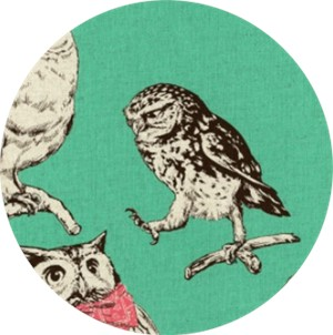 Cosmo Textiles, CANVAS, Stylish Owls Aqua